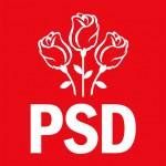 """Lider PSD: """"PNL-istii cer demisia lui Victor Ponta pentru ca le este FRICA de Justitie"""""""