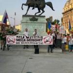 """Miting impotriva Mega-Moscheii: """"Neamul romanesc nu e pasalac turcesc"""""""