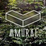 AMURAL – primul festival de arte vizuale post-internet din Romania, pe zidurile Brasovului medieval