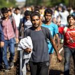 Vine valul de REFUGIATI spre Romania? Ungaria ridica GARD si la granita cu tara noastra