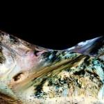"NASA, descoperire EPOCALA pe Marte. ""Aceasta inseamna ca ar putea exista VIATA"" – Video LIVE"