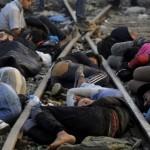 Refugiati SIRIENI, barbati tineri, si-au facut aparitia si in Romania. Prinsi intr-o gara din Arad