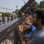 refugees-stranded-serbian-hungary-border