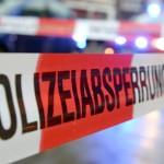 O noua OROARE cutremura Germania. Fetita de 7 ani VIOLATA de un turc dupa ce a fost rapita de pe terenul de joaca