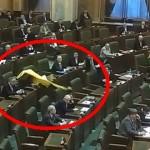 "CIRC. Cristianei Anghel i-a cazut un steag in CAP. Ilie Nastase: ""Ea este un PATRIOT"" – VIDEO"