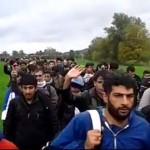 "Parlamentar austriac: ""Refugiatii sunt neanderthalieni needucati, acum ii aducem aici"". I se cere demisia"