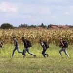 Sirienilor NU le place in Romania. Desi au cerut azil aici, au incercat sa FUGA in Occident