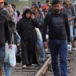 Focuri de arma la granita Romaniei. Un grup MARE de migranti a incercat sa intre din Serbia