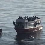 Alerta, un vapor plin cu migranti a esuat intentionat pe litoralul romanesc, intre 2 Mai si Vama Veche. Imagini de la fata locului – Video