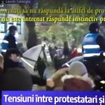 Jandarmeria Romana vine cu scuze si se face de ras: Caii au fost provocati. Reactie: Era omul vostru!