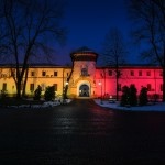 De Ziua Micii Uniri, Palatul Cotroceni si-a schimbat look-ul. Mesajul lui Iohannis