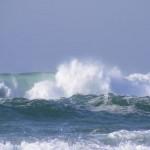 Cutremur de 7,6 produs in Marea Caraibelor. Ce ar putea urma