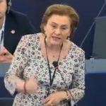 """O noua paruiala in PSD. Maria Grapini, scandalizata ca Ioan Mircea Pascu """"a vorbit de mine"""": """"Trebuie sa aveti mai mult respect"""""""